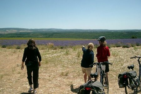 Provence und Lubéron - guided bike tour