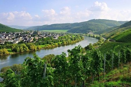 The Moselle-Cycling-Trail from Trier to Koblenz